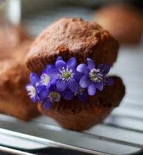 Monikutės pavasaris (pagaliau pavykę keksiukai)