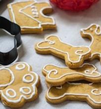Sausainiai šuniukui