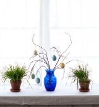 Pavasarinis/velykinis BRUNCH