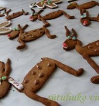 Imbieriniai sausainiai su medum