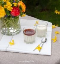 Panna cotta su jogurtu…